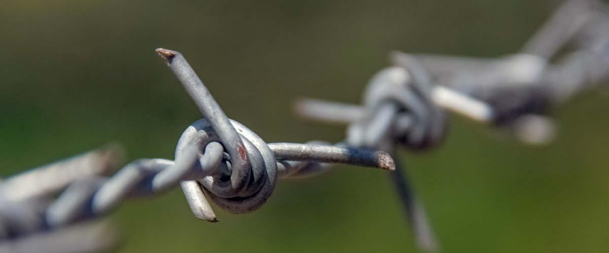 Genocidios y Crímenes contra la Humanidad: Una Introducción a su Estudio